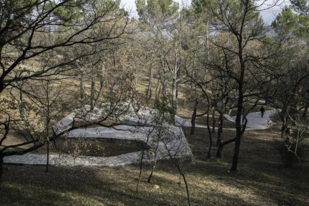 intervencion en viñedos de Ai Weiwei en Chateau La Coste