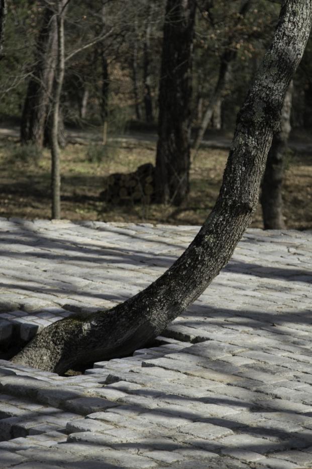 detalle de los adoquines por Ai Weiwei en Chateau La Coste