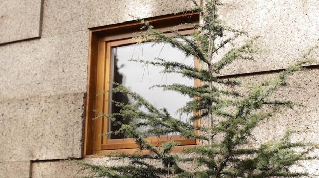 ventana en casa de corcho ecocubo diariodesign