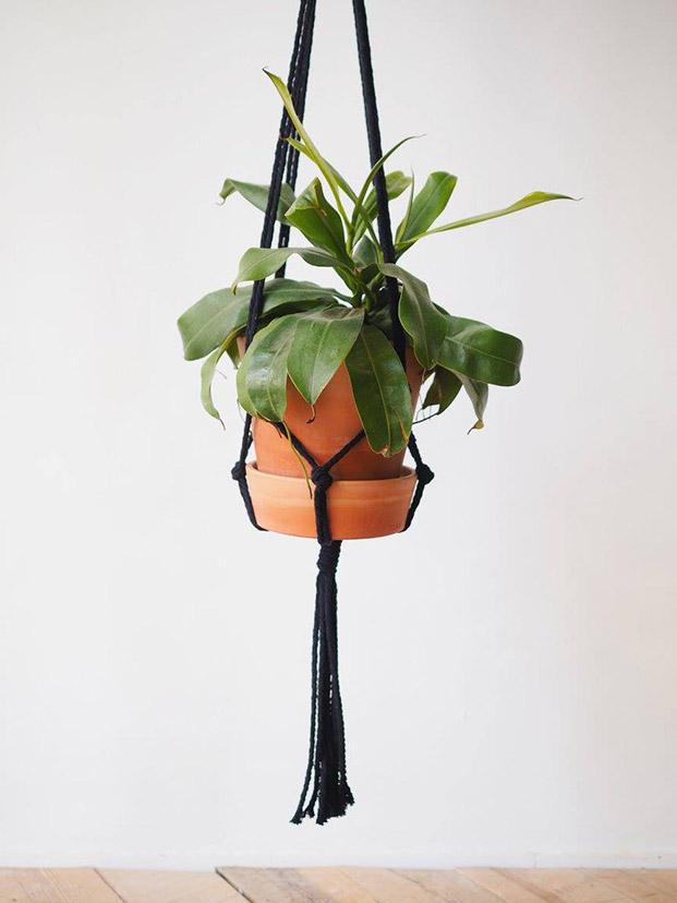 macrame en negro para colgar planta de nuga modelo bacora para el día de la madre en diariodesign