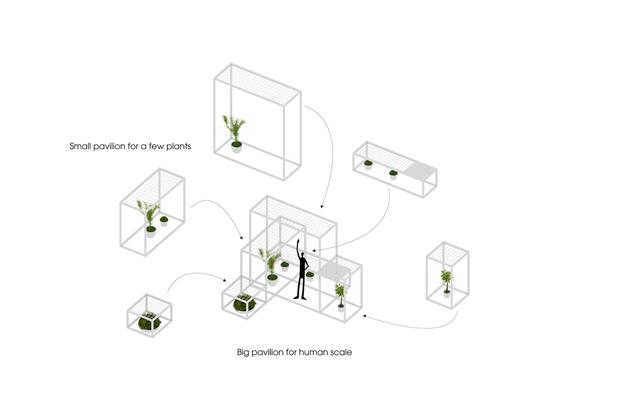 plantas purificadoras de aire en el pabellon de los origenes