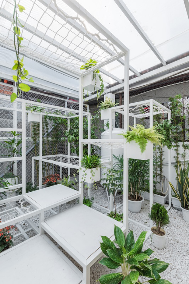 plantas en el pabellon de los origenes de hanoi