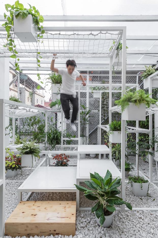vegetacion en el pabellon de los origenes