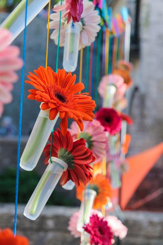 detalle de flores en girona