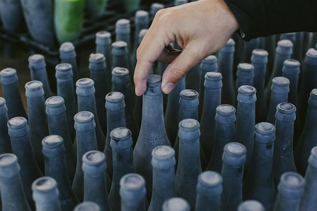 botellas de cervezas alhambra de álvaro catalán de ocón