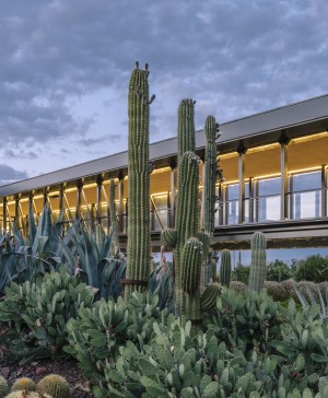 jardin botanico cactus Desert City Jacobo Garcia German Madrid diariodesign