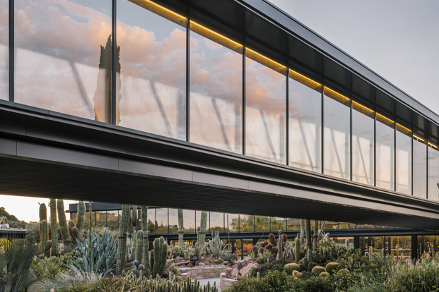 cerramientos jardin botanico cactus Desert City Jacobo Garcia German Madrid diariodesign
