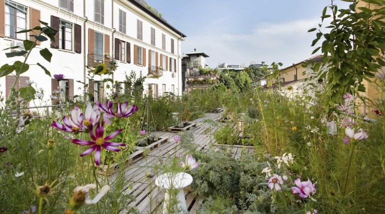 huertos urbanos orto fra i cortile piuarch diariodesign