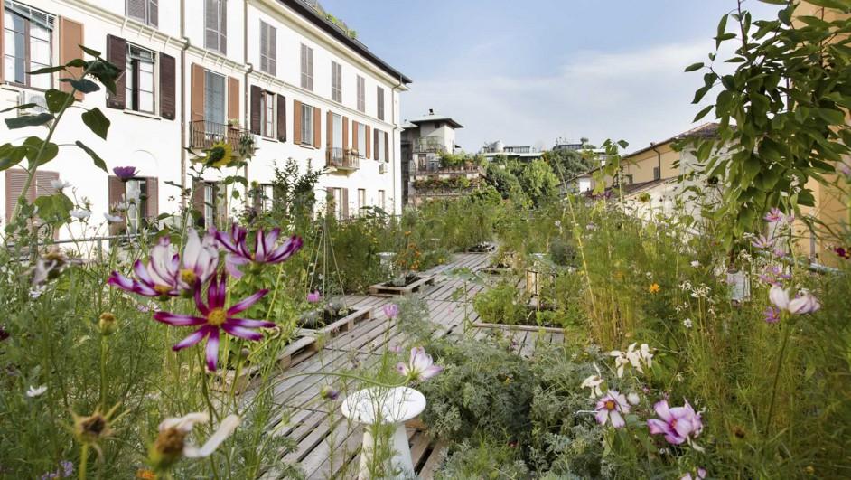 huerto urbano orto fra i cortile piuarch diariodesign