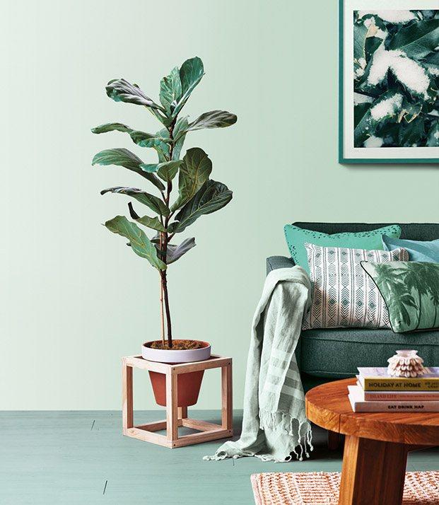succulent green paleta de colores valentine diariodesign