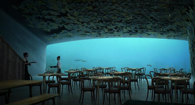 biodiversidad marina en el primer restaurante bajo el agua diariodesign