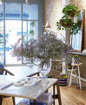 cosy showroom interioristas en barcelona decotherapy diariodesign