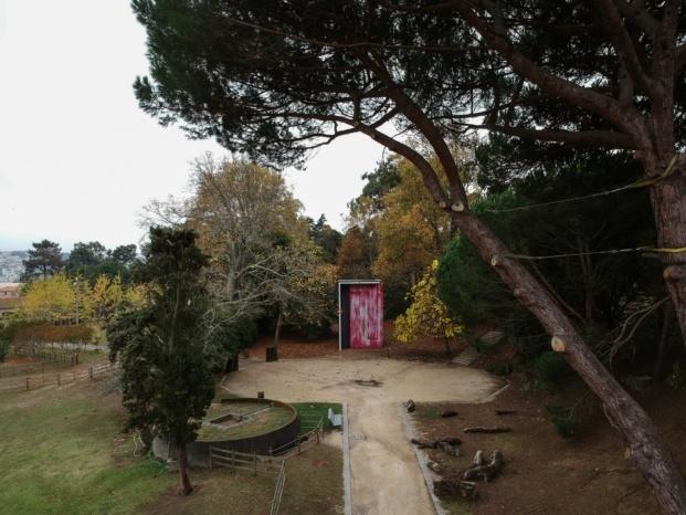 serralves museum sao paulo bienial diariodesign diogo aguiar ubicacion