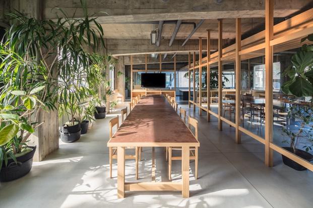 oficinas con plantas de interior