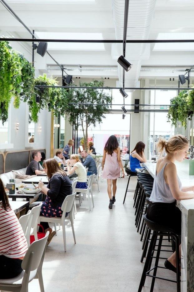 naturaleza y punk en la cafetería redroaster en Brighton diariodesign