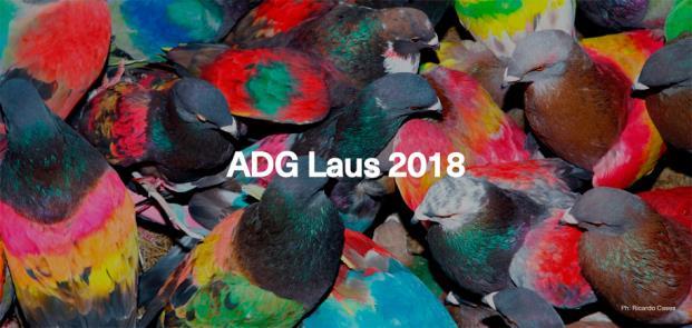 adg laus 2018 cartel diariodesign