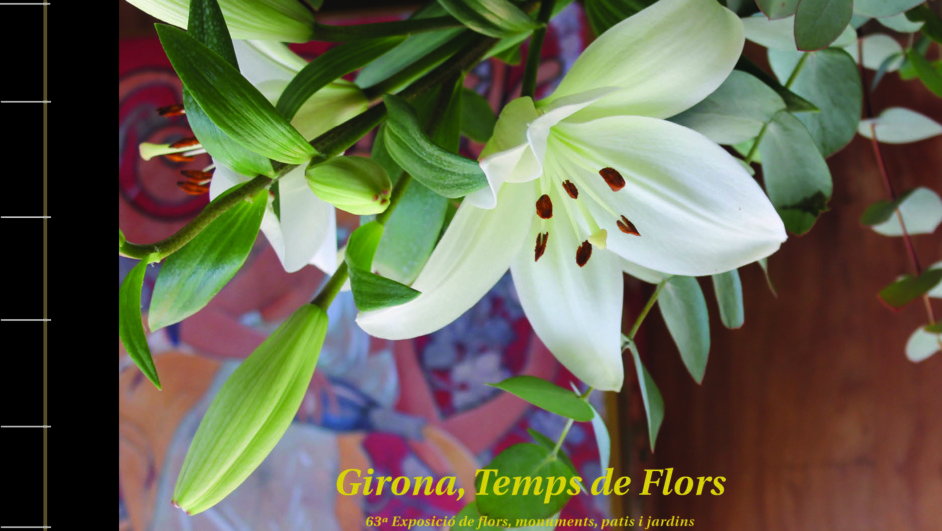 libro de lara pujol sobre temps de flors en girona diariodesign