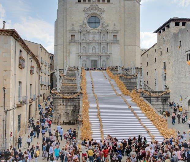 Temps de Flors Girona 2018 catedral diariodesign