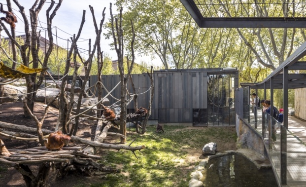premios fad diariodesign ciudad y paisaje orangutanes zoo barcelona