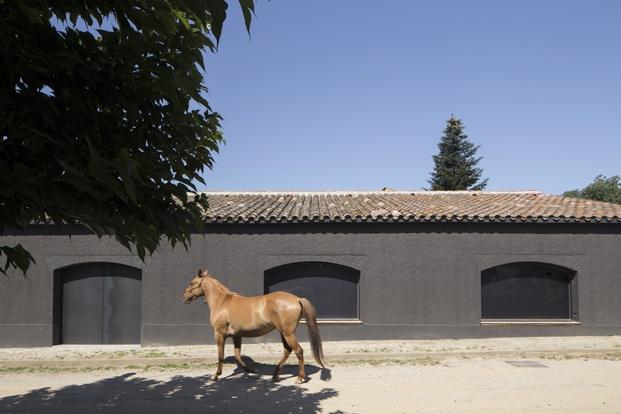 antigua masía francesc rifé caballo diariodesign