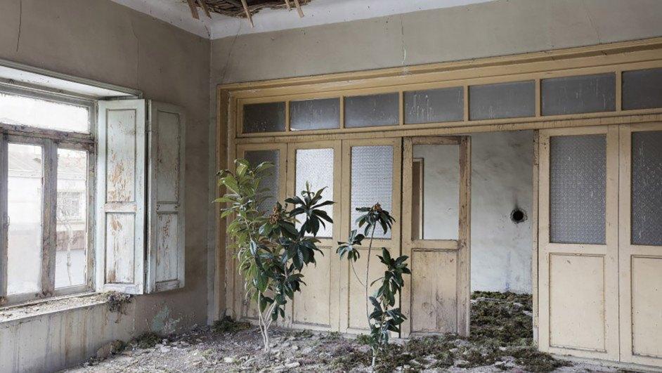 gohar dashti fotografia casa naturaleza diariodesign