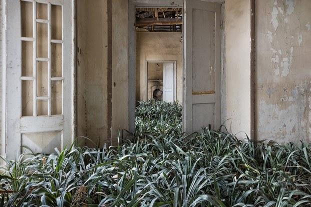 home gohar dashti fotografia pasillo diariodesign