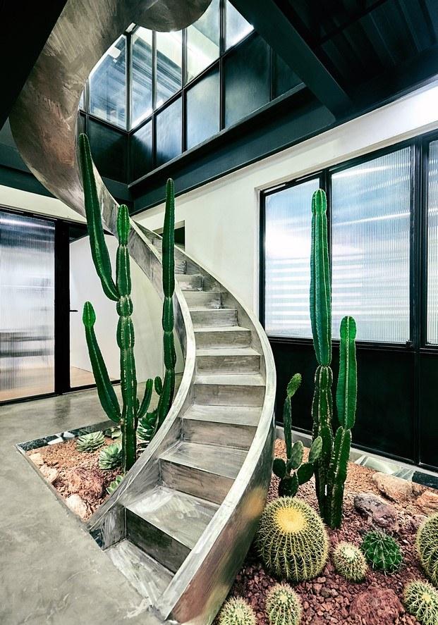 estudio fotográfico AStudio escalera y cactus diariodesign