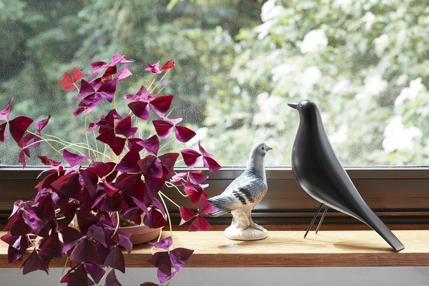 eames house bird vitra diseño animal diariodesign