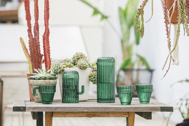 set kit pack de vasos verdes con forma de catus doiy sgauro diariodesign