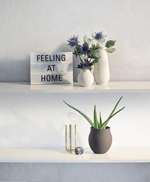 Jarrones blancos y negros con flores azules y aloé vera diariodesign