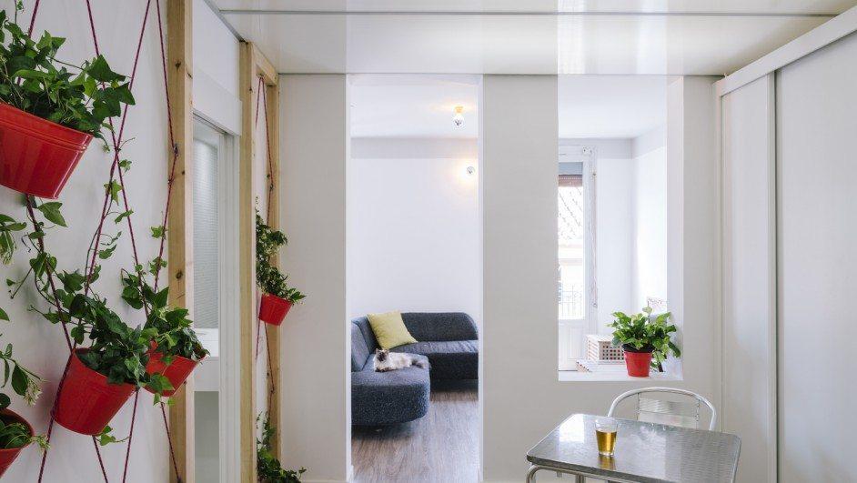 apartamento en lavapiés comedor salón con plantas