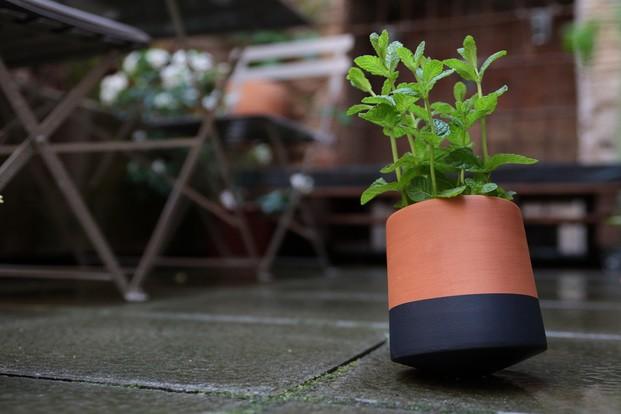 planta menta en macerta de barro pinatda de negro en el suelo voltasol livingthings diariodesign