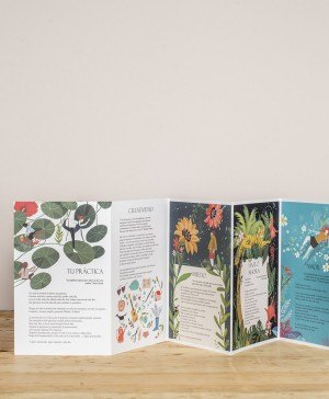 libros ilustrados acordeones savanna books diariodesign