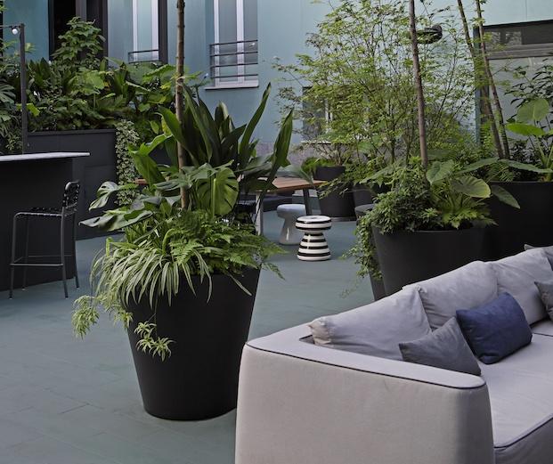 Patio interior con plantas en macetas grandes