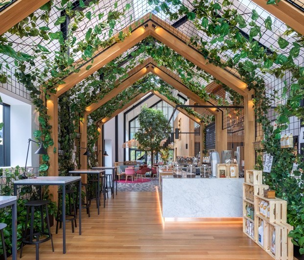 Cafetería Coperaco con plantas interiores