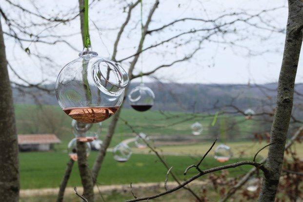 vaso vino suspendido rosado matali crasset