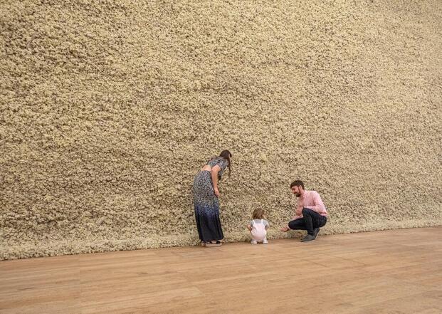 Olafur Eliasson. Exposición In Real Life. Tate Modern, 2019. Muro de musgo
