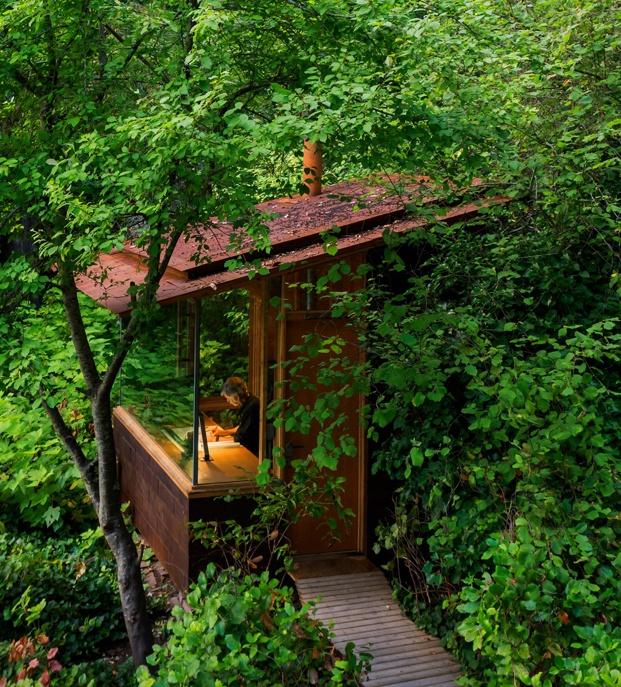 barraca estudio en el bosque
