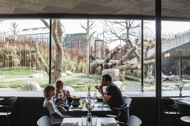 Casa Panda diseñada por BIG para los pandas gigantes Mao Sun y Xing E del zoo de Copenhague. Restaurante