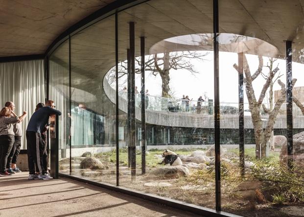Casa Panda diseñada por BIG para los pandas gigantes Mao Sun y Xing E del zoo de Copenhague. Desde el interior