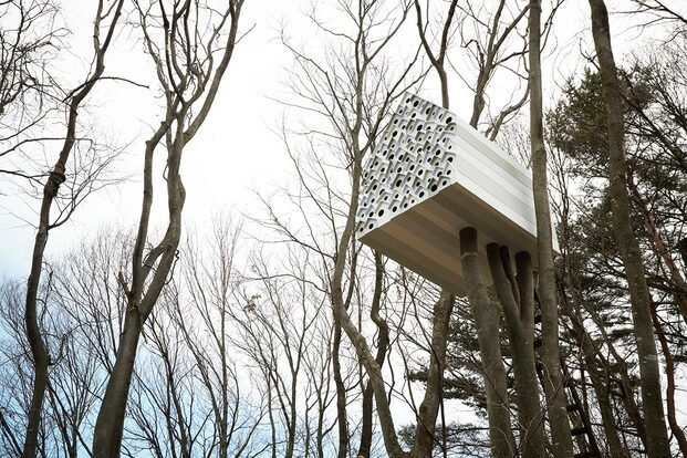 Treehouse project. Japan. Nendo