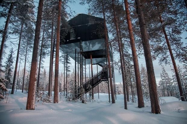 Cabaña en el árbol.- The 7th room. Snohetta. Suecia
