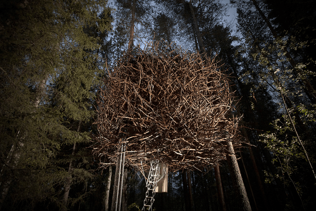 Treehotel Suecia. Cabaña árboles. Nest