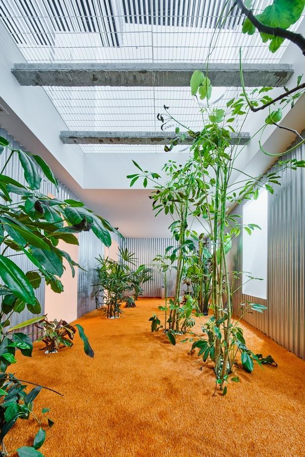 jardín interior vivir entre plantas en Madrid por Lucas y Hernández Gil