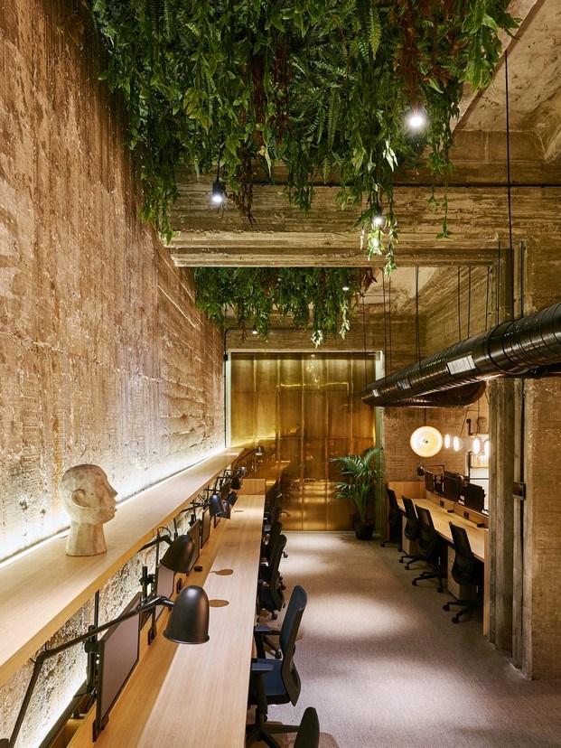 techo vegetal oficinas en madrid workout