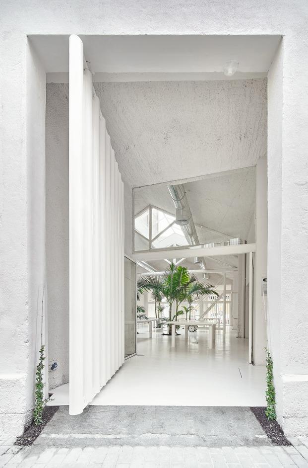 Un espacio diáfano, blanco, lleno de luz y verder