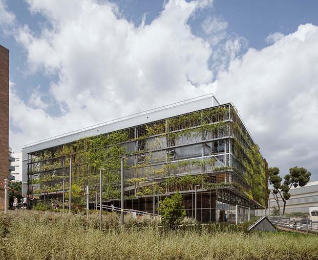 Turo de la Peira. Polideportivo. Exterior. Anna Noguera arquitecta. Vegetación