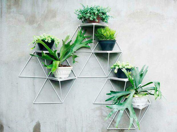 jardín vertical para el balcón