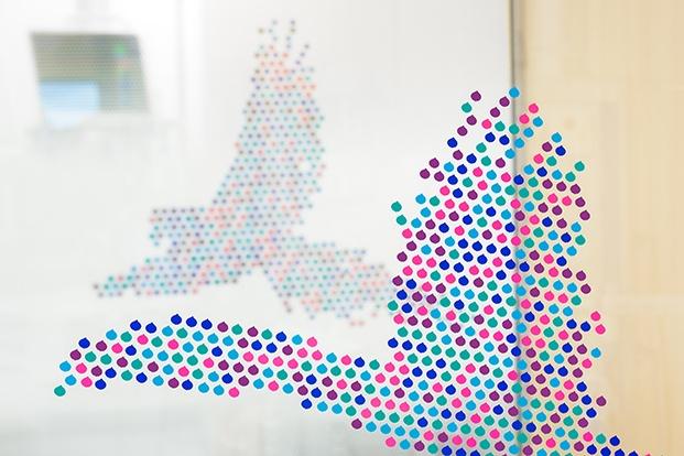 Detalle de la configuración de las siluetas de pajaros con vinilos en las cristaleras de cierre de las salas.
