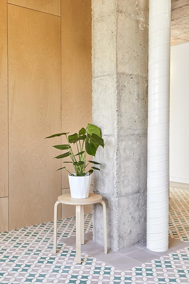 Las plantas verdes ponen el toque de color y cálido en el apartamento brutalista reformado por MINIMO